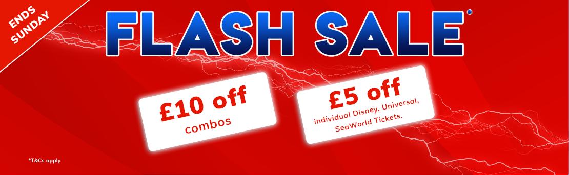 AA Flash Sale