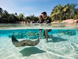 Discovery Cove Ultimate Package without Dolphin Swim