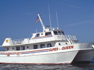 Real Florida Adventures Clearwater Beach & Deep Sea Fishing