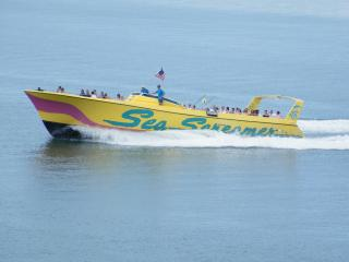 Sea Screamer